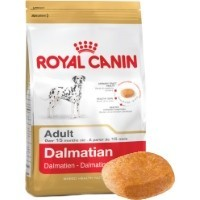 Royal Canin Dalmatian Adult 12kg big image