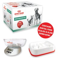 Royal Canin Weight Management Pack big image