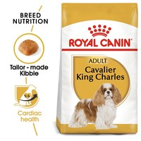 Royal Canin Cavalier King Charles Dry Adult Dog Food big image