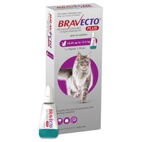 Bravecto Plus Spot-On Solution for Large Cats big image