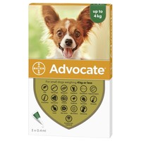 Advocate for Small Dogs big image