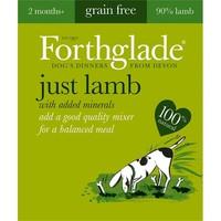 Forthglade Just Lamb Grain Free Dog Food (18 x 395g) big image
