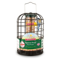 Walter Harrison's Squirrel Proof Protector Seed Feeder big image