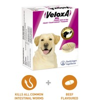 Veloxa XL Chewable Tablets for Dogs big image