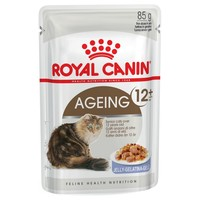 Royal Canin Ageing 12+ Pouches in Jelly Senior Cat Food big image