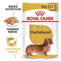 Royal Canin Dachshund Wet Adult Dog Food big image