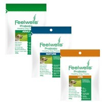 Feelwells Probiotic Mature Dog Treats big image