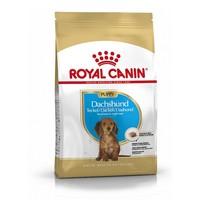 Royal Canin Dachshund Puppy 1.5kg big image