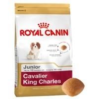 Royal Canin Cavalier King Charles Spaniel Junior 1.5kg big image