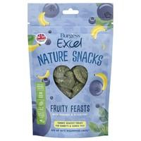 Burgess Excel Nature Treats Fruity Feasts 60g big image