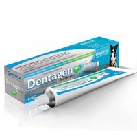 Dentagen Toothpaste 70g big image