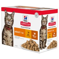 Hills Science Plan Adult Cat Food Pouches (Poultry Selection) big image