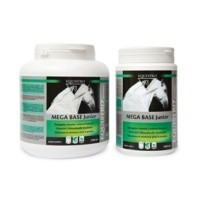 Equistro Mega Base Junior for Horses - 1 Litre big image