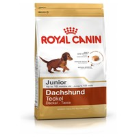 Royal Canin Dachshund Junior 1.5kg big image