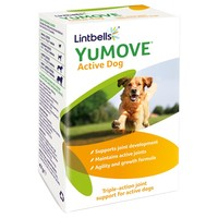 Lintbells YuMOVE Active Dog big image
