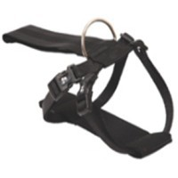 PetUK Dog Seat Belt Harness big image