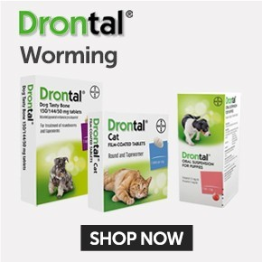 Drontal Worming